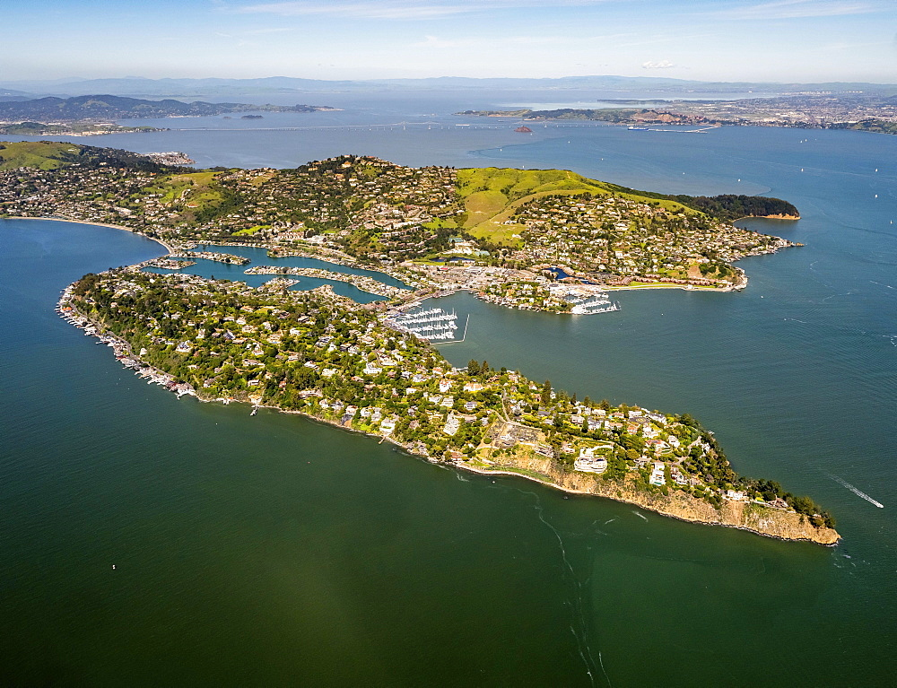 Aerial view, Belvedere Tiburon peninsula, San Francisco Bay Area, California, USA, North America