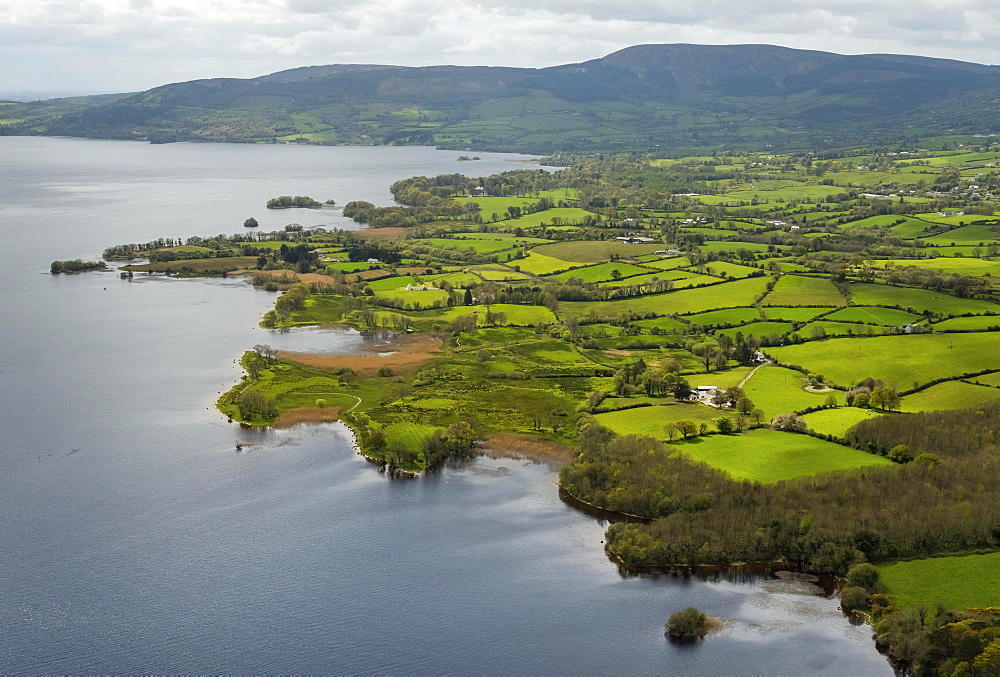 Headland, peninsula Ogonnelloe, Lakelands, Lough Derg Lake, River Shannon, County Clare, Ireland, Europe