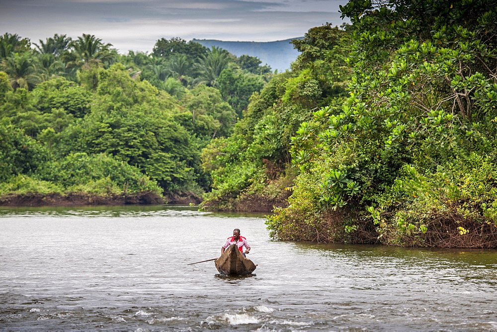 Man in dugout canoe, navigating river, Foumbam, West Region, Cameroon, Africa
