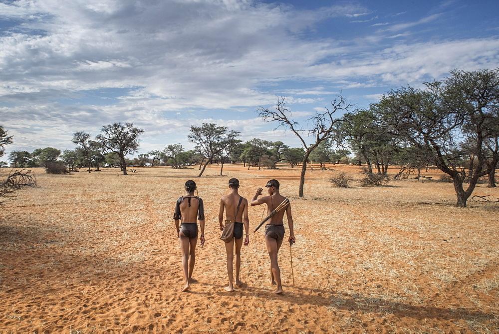 Kung Bushmen in the Kalahari, Zebra Lodge, Hardap Region, Namibia, Africa