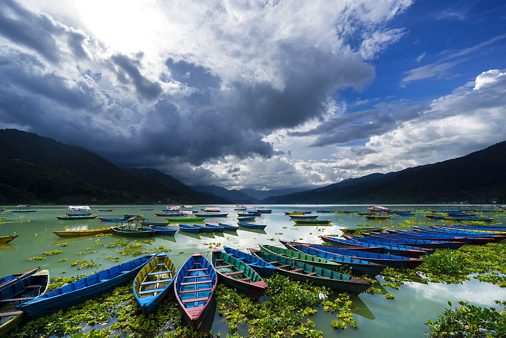 Rowing boats are tight together at Phewa Lake, dark thunderstorm clouds are rising at the sky, Pokhara, Kaski District, Nepal, Asia