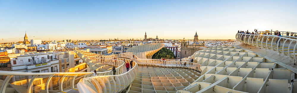 View from Metropol Parasol to numerous churches at sunset, Iglesia de la Anunciacion, La Giralda and Iglesia del Salvador, bell tower of the Cathedral of Sevilla, Catedral de Santa Maria de la Sede, Sevilla, Andalusia, Spain, Europe