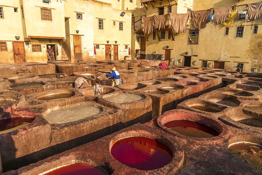 Leather dyeing tanks, dyeing plant, Tannerie Chouara tannery, Fes el Bali tannery and dyeing district, Fez, Morocco, Africa