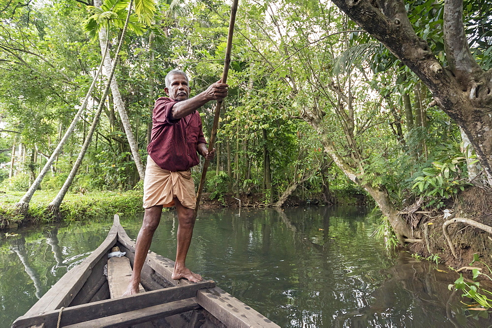 Boatman with punting pole on river, Backwaters, Kerala, India, Asia