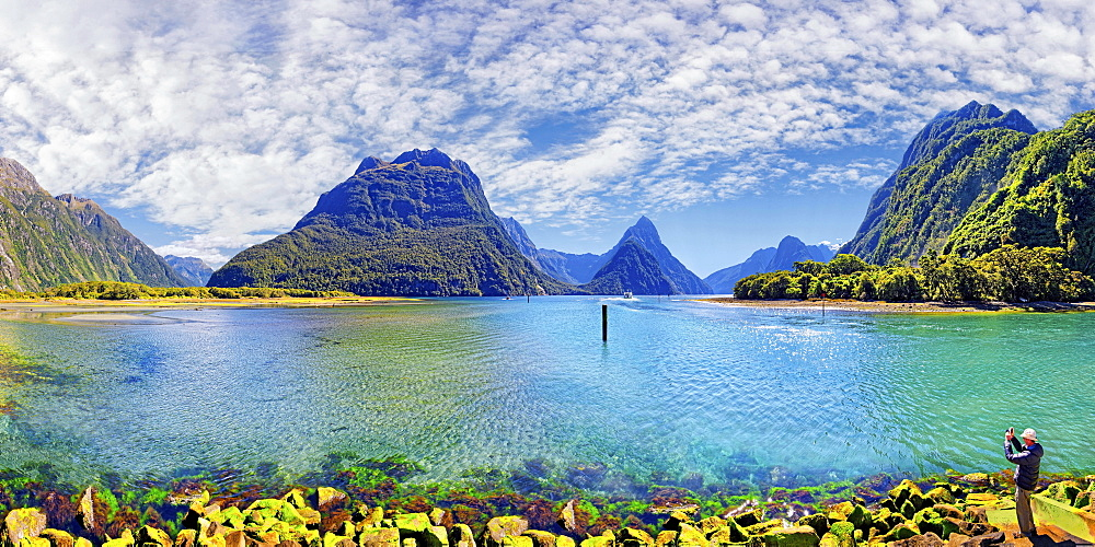 Panorama of Milford Sound, Fiordland National Park, Te Anau, South Island, New Zealand, Oceania