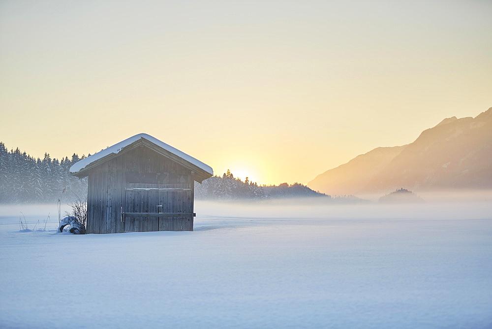 Small cabin, winter landscape, hay barn in fog at dusk, Kramsach, Tyrol, Austria, Europe