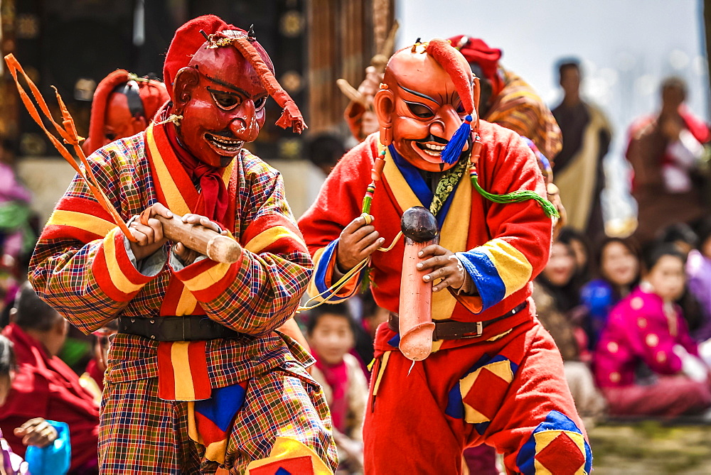 Fools, jesters with phallus symbol at the mask dance, religious Tsechu monastery festival, Gasa district Tshechu Festival, Gasa, Himalaya region, Kingdom of Bhutan