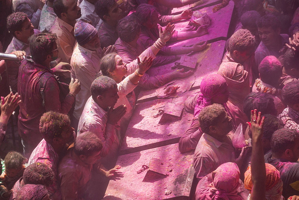 Devotees covered in coloured powder praying, Holi festival, Banke Bihari Temple, Vrindavan, Uttar Pradesh, India, Asia