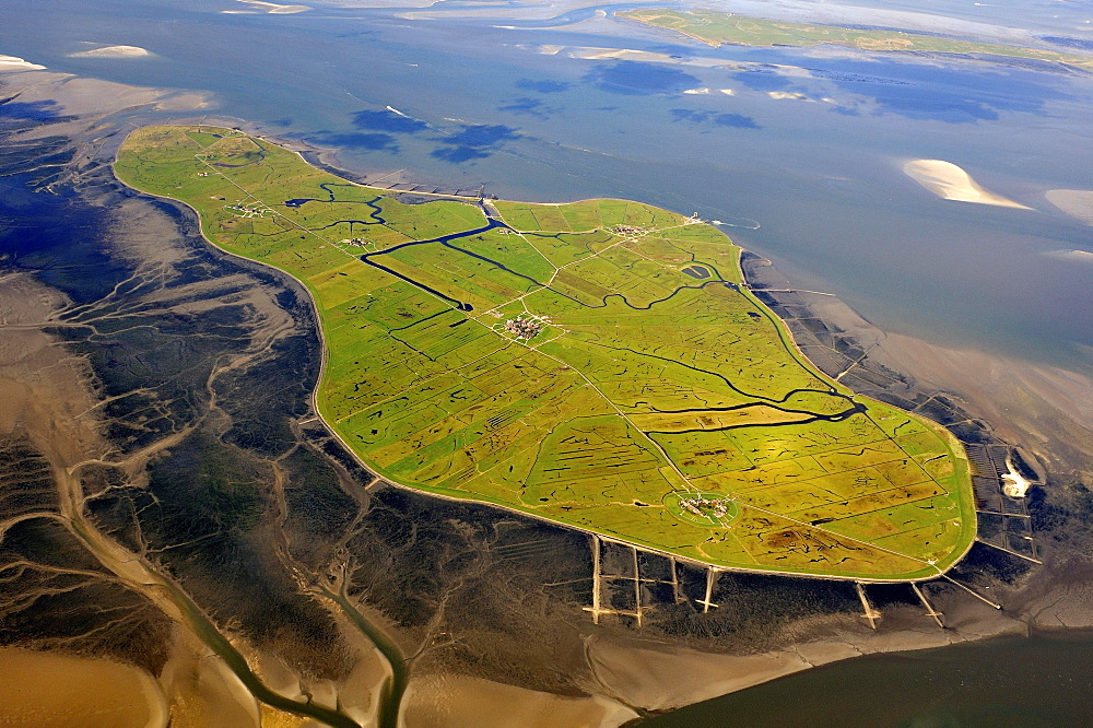 Aerial view, Hallig Hooge, Hooge holm in the Wadden Sea, North Sea, North Frisia, Schleswig-Holstein, Germany, Europe