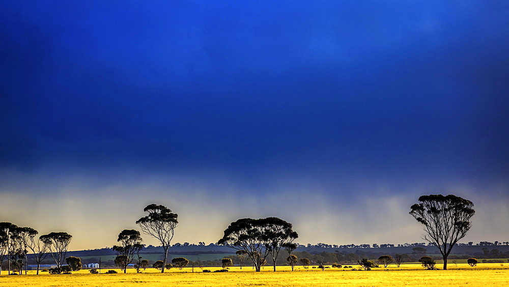 Dark thunderstorm clouds approaching, Western Australia, Australia, Oceania
