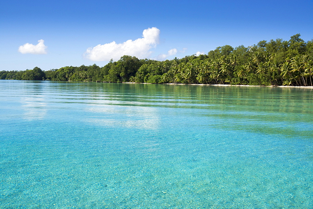 Island, Palau, Micronesia, Oceania