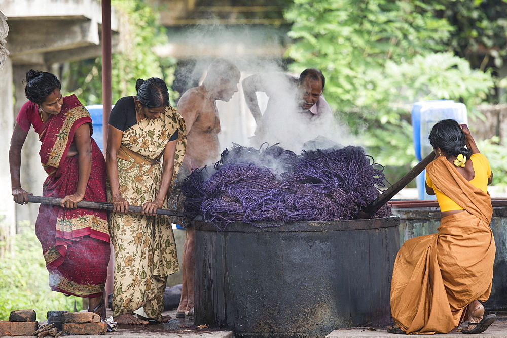 Dyeing of ropes made of coconut fibres or coir, coconut fibre industry, factory, Alappuzha, Kerala, India, Asia