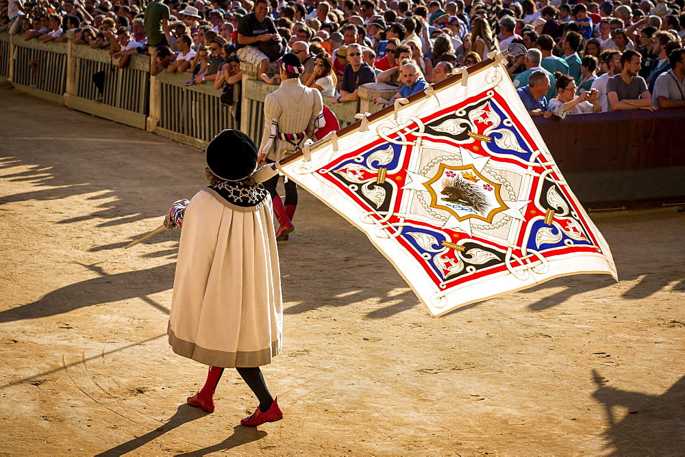 Man carrying a flag from the Crested Porcupine or Istrice contrade, historical parade before the Palio di Siena horse race, Siena, Tuscany, Italy, Europe