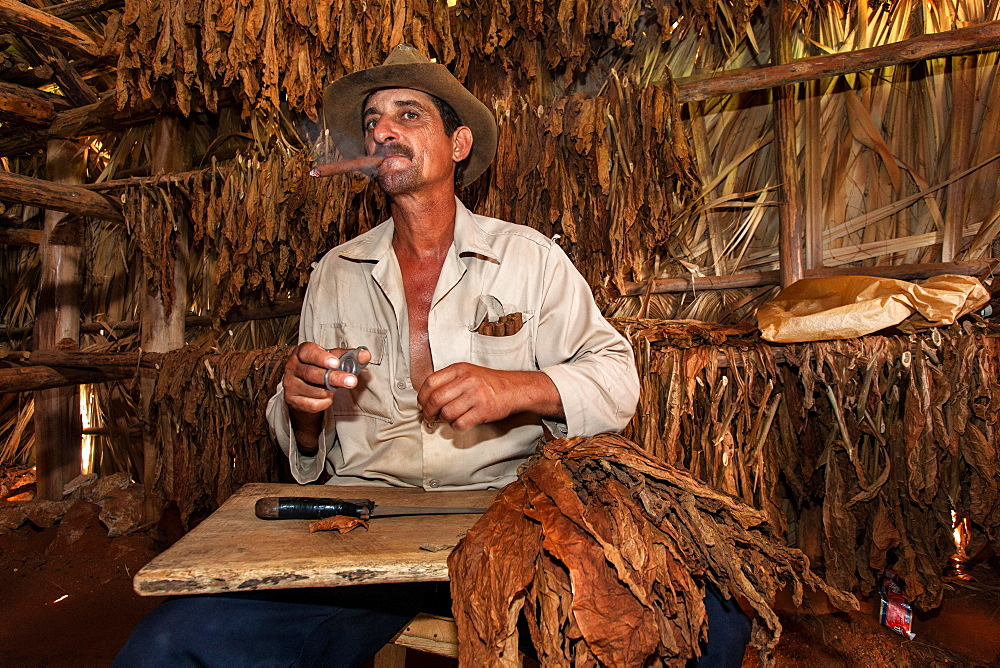 Tobacco farmer smoking a cigar in a tobacco shed, Vinales Valley, Cuba, Central America