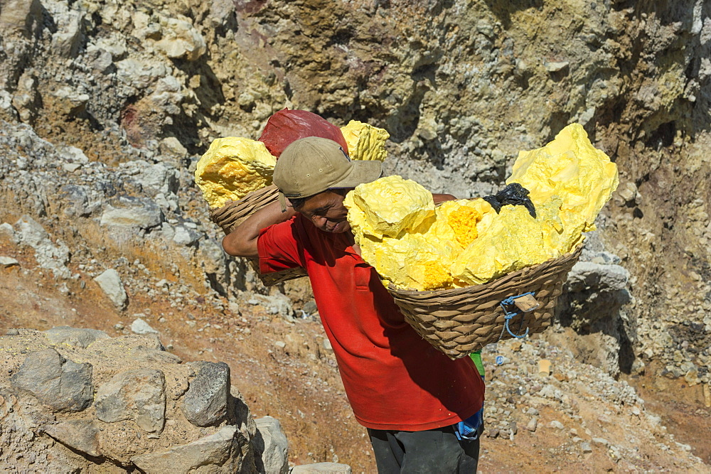 Sulphur carrier climbing out of Kawah Ijen volcano, Ijen crater, Banyuwangi, East Java, Indonesia, Asia