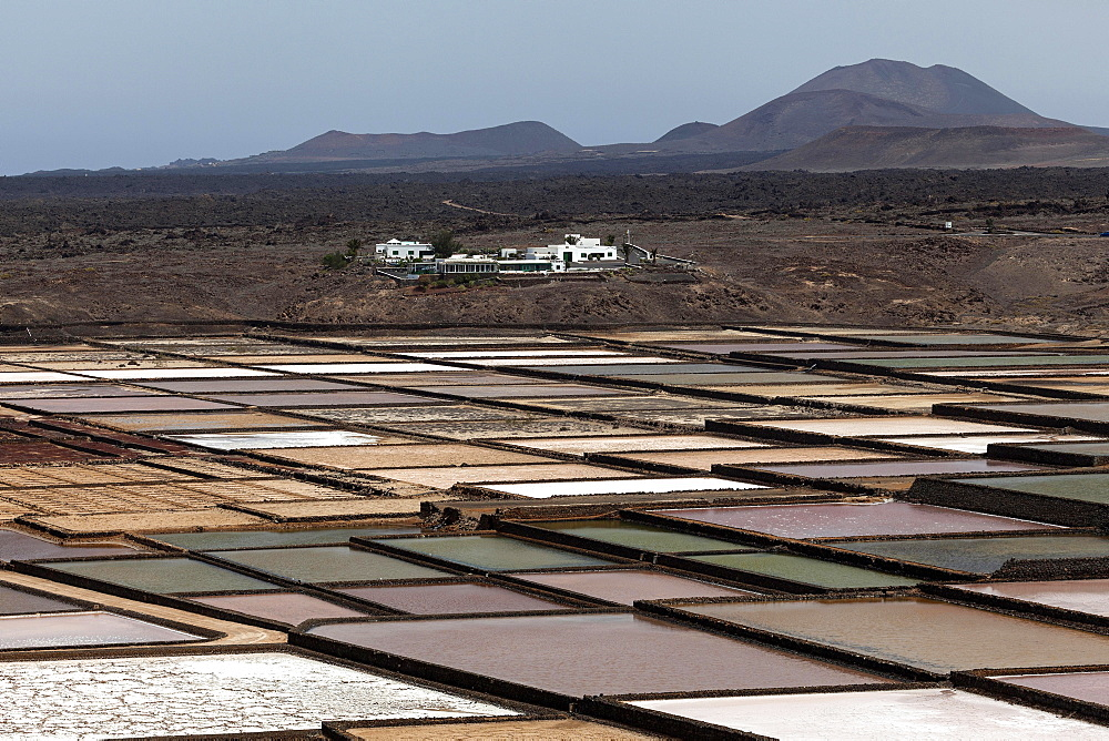 Sea salt production, salt pans, Salinas de Janubio, Lanzarote, Canary Islands, Spain, Europe