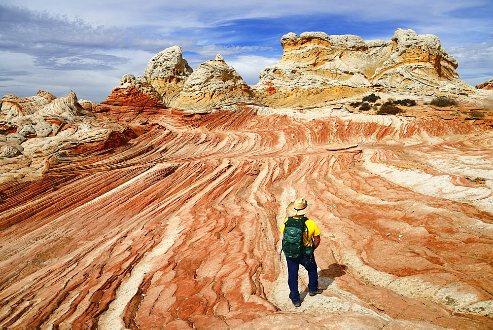 Hiker in White Pocket Canyon, Kanab, Utah, USA, North America - 832-382982