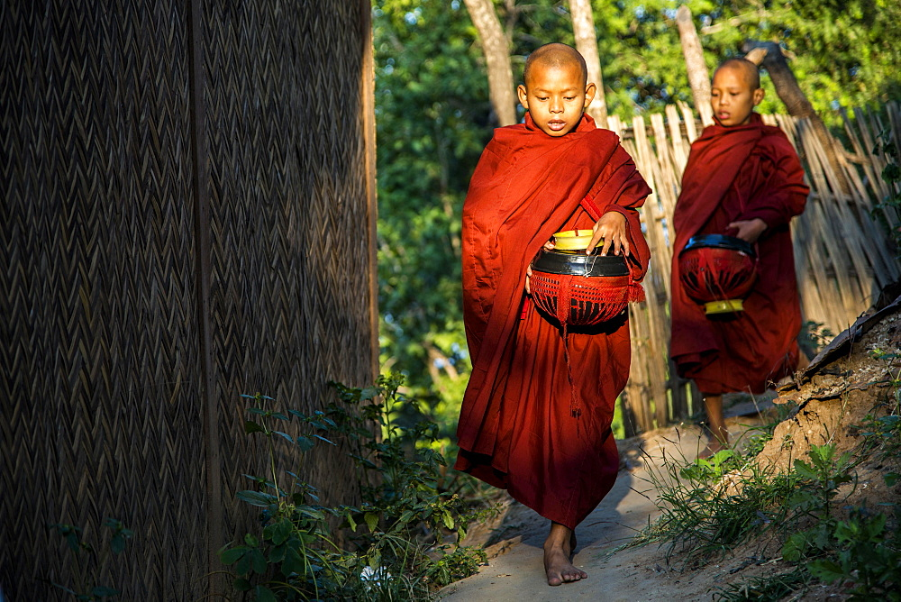 Buddhist novices with begging bowls at their morning begging tour, Mount Popa, in Bagan, Mandalay Division, Myanmar, Asia