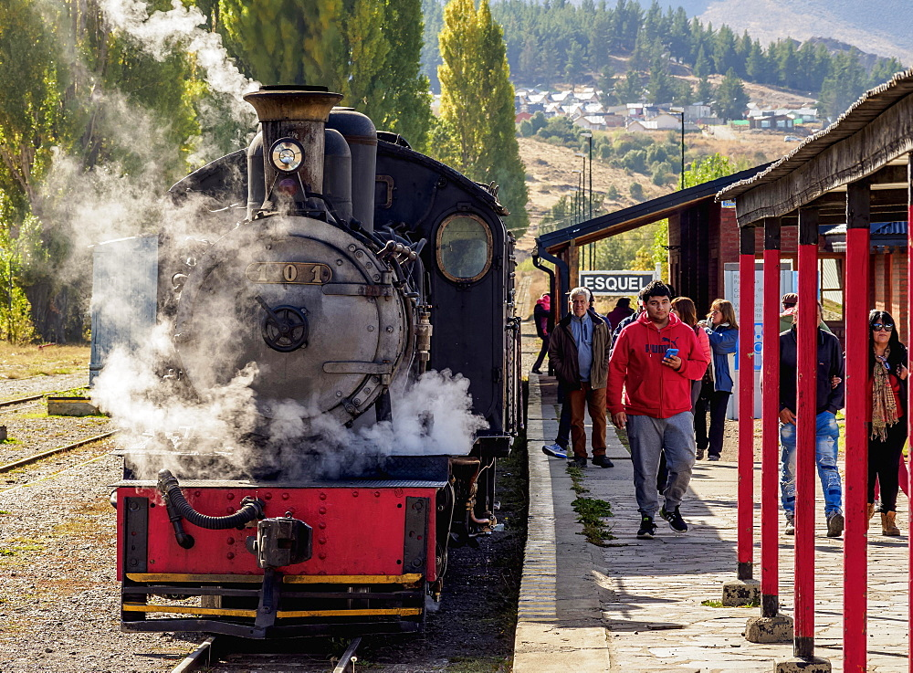 Old Patagonian Express La Trochita, steam train, Esquel Train Station, Chubut Province, Patagonia, Argentina, South America - 832-383157