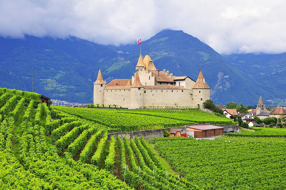 Chateau d''Aigle or Aigle Castle, surrounded by vineyards, Aigle, Canton of Vaud, Switzerland, Europe - 832-383319