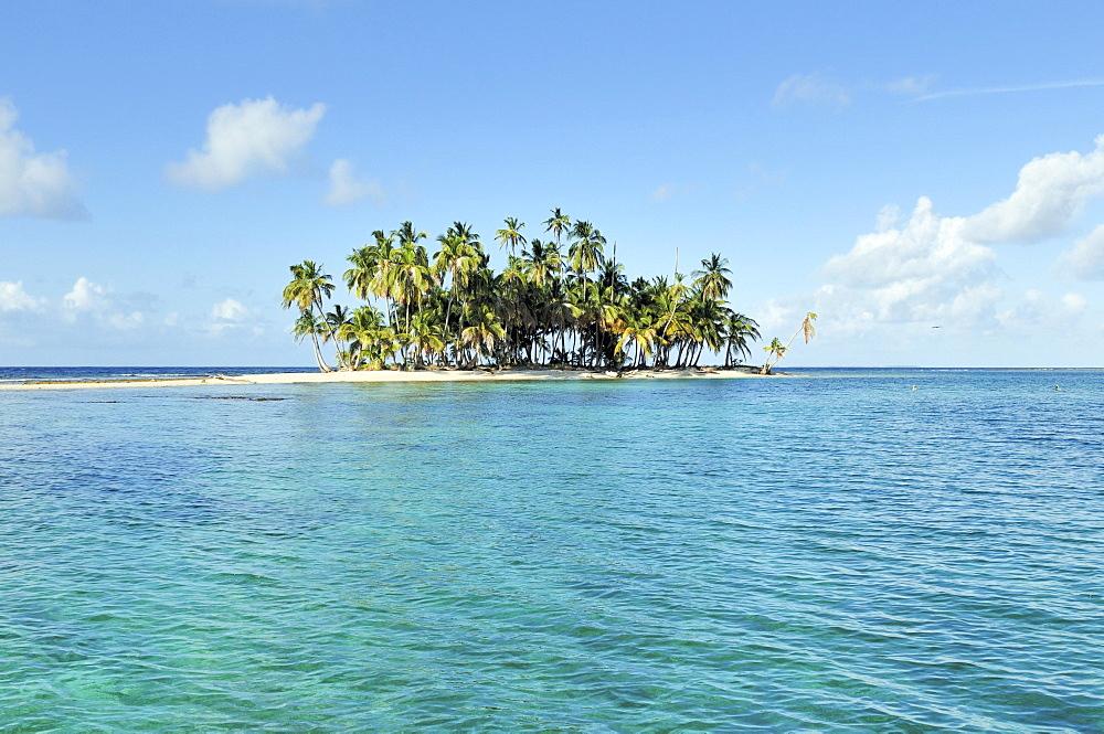 Tropical island with palm trees, Cayos Los Grullos, Mamartupo, San Blas Islands, Panama, Central America - 832-383338