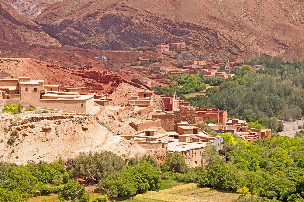 Tinerhir, oasis city, Souss-Massa-Daraa Region, Morocco, Africa