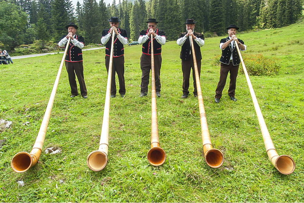 Group of alphorn players performing on a meadow in Justistal valley, Beatenberg, Bernese Oberland, Switzerland, Europe