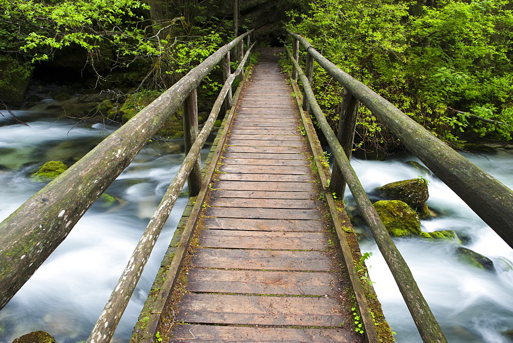 Wooden footbridge over brook with moss-covered stones, Golling Waterfall, Salzburg, Austria, Europe