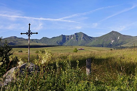 Fontaine Salee reserve, Auvergne Volcanoes Natural Regional Park, massif of Sancy, Puy de Dome, Auvergne, France, Europe