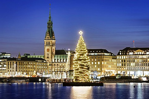 Binnenalster or Inner Alster Lake at Christmas time with Alster fir tree and city hall, Hamburg, Germany, Europe