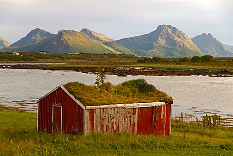 A hut with a grass roof in front of the peaks of the island of Langoya, Langoya, part of the VesterÂlen, Vesteralen archipelago, Nordland, Norway, Europe