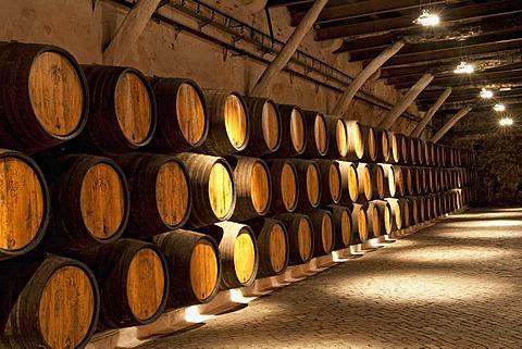 Barrels, Sandeman storehouse, Vila Nova de Gaia, Porto, Portugal, Europe