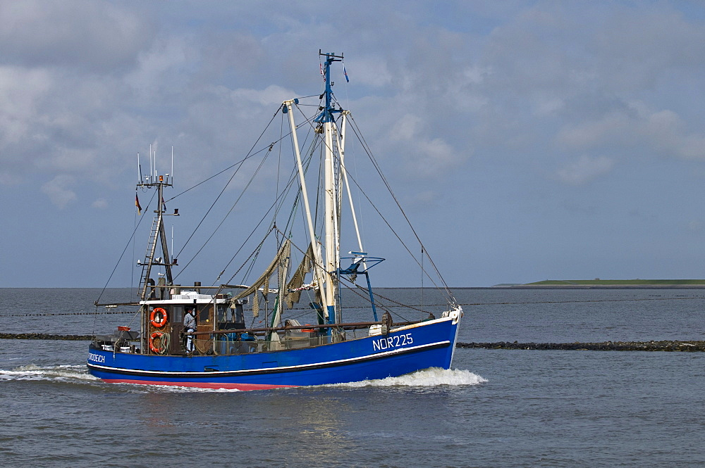 Blue crab fishing boat, NOR 225, returning to the port of Norddeich after fishing, Lower Saxon Wadden Sea, UNESCO World Heritage Site, Lower Saxony, Germany, Europe