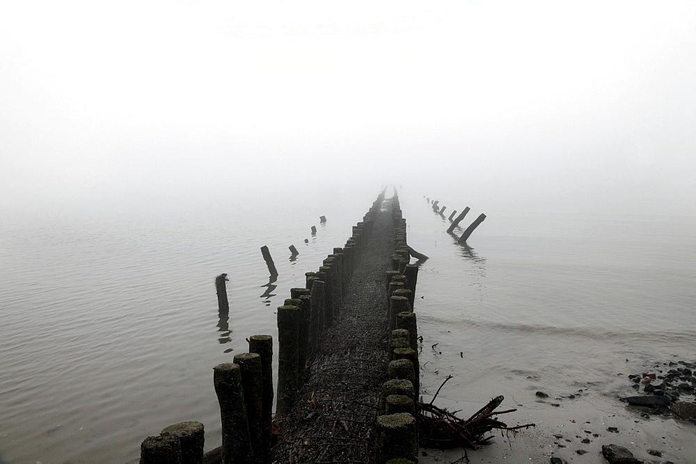 Breakwaters, wooden groynes, on the western beach, island protection, coastal protection, fog, autumn, North Sea island of Spiekeroog, Lower Saxony, Germany, Europe
