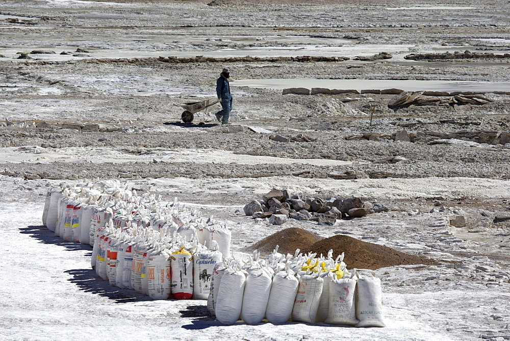 Salt worker with a wheelbarrow, flour sacks packed with salt at a salt lake, Altiplano, Potosi, southern Bolivia, South America