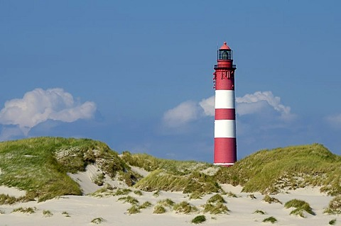 Amrum lighthouse on the dunes, Amrum Island, Nordfriesland, North Frisia, Schleswig-Holstein, Germany, Europe