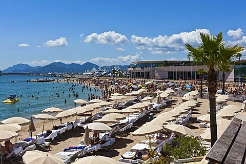 Beach of Cannes on the Croisette promonade, Cote d'Azur, Southern France, France, Europe, PublicGround