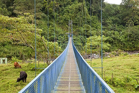 Suspension bridge in the small town of Orosi in the Orosi Valley, Costa Rica, Central America