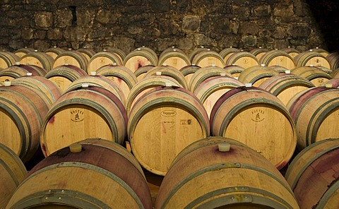 Wine aging in oak barrels at winery in Bolzano, Bozen, Trentino-Alto Adige, Italy, Europe