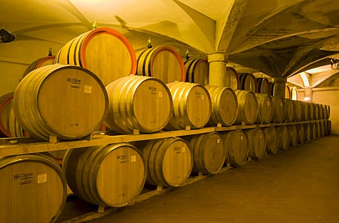 Wine aging in oak barrels in vaulted cellar in Montalcino, Toscana, Tuscany, Italy, Europe