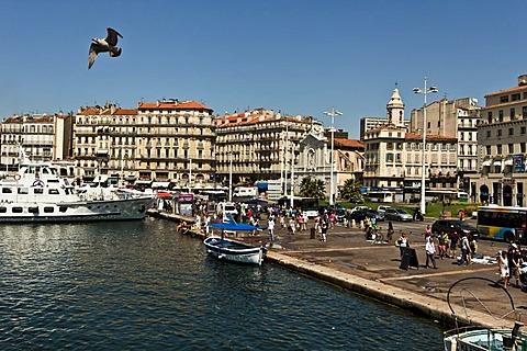 View of the Old Port, Vieux Port, Marseille, Provence-Alpes-Cote d'Azur, France, Europe