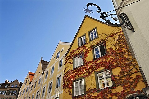 Vine-covered facades, Alte Bergstrasse street, Landsberg am Lech, Bavaria, Germany, Europe