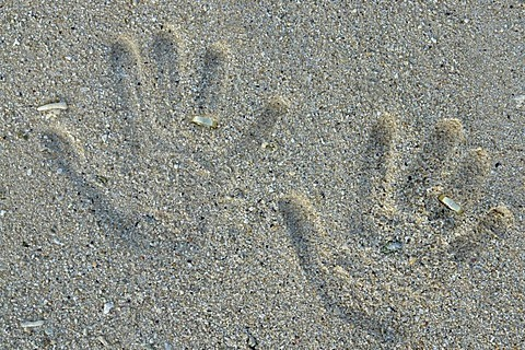 Wedding rings and hand prints in the sand on the beach of Pointe aux Piments, Mauritius, Africa