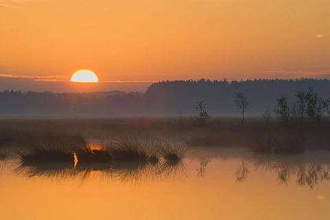 Marshland with sunrise, Tinner Dose moor, Haren, Emsland region, Lower Saxony, Germany, Europe