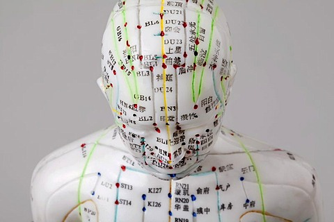 Acupuncture, a female model with marked acupuncture points labeled with Chinese characters on the meridians, detail head and torso, traditional Chinese medicine, TCM, the body's energy flow, Qi
