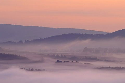 Fog in the Elbe Sandstone Mountains, Saxony, Germany, Europe