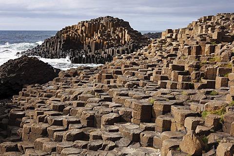 Basaltic columns, Giant's Causeway, Causeway Coast, County Antrim, Northern Ireland, United Kingdom, Europe
