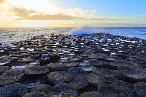 Giant's Causeway, Causeway Coast, County Antrim, Northern Ireland, United Kingdom, Europe