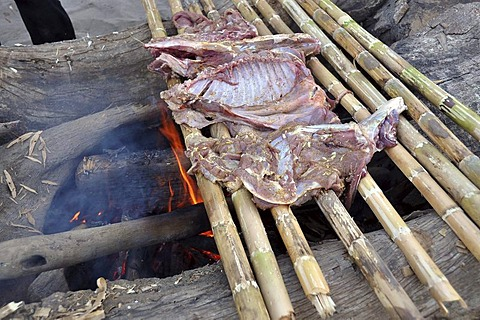 Indians preparing game on green bamboo sticks, typical Indian preparation, the meat is cooked over an open fire, Amazonia, Brazil, South America