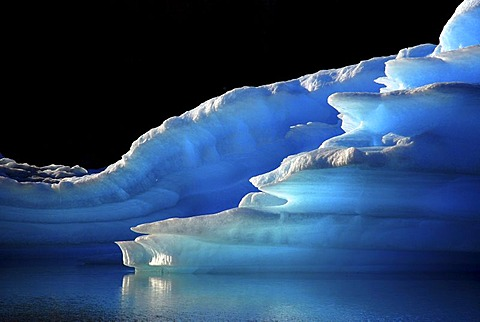 Intensely glowing blue icebergs in Lago Argentino, El Calafate, Patagonia, Argentina, South America
